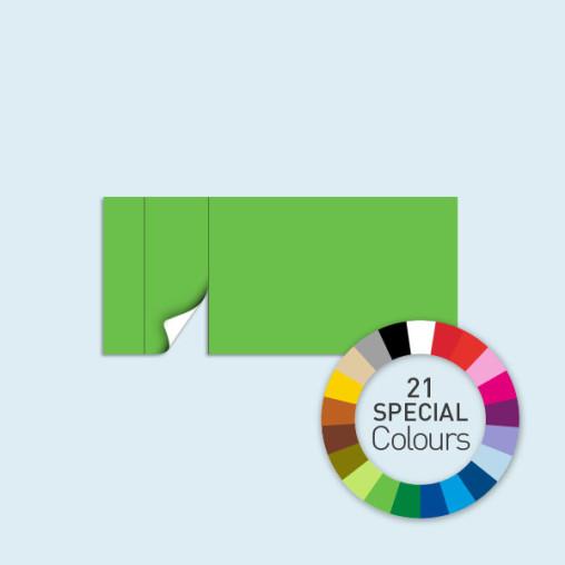 Wand mit 1 Tür links 450 x 205 cm Basic/Select, in 21 Sonderfarben erhältlich