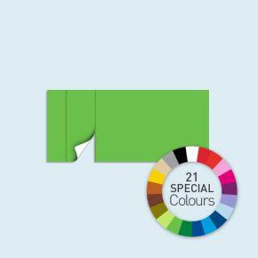 Wand mit 1 Tür links Basic/Select 450 x 205 cm, in Sonderfarben, Seitenkanten mit Reißverschluss