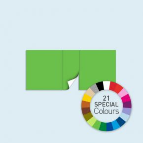 Wand mit 1 Tür mittig Basic/Select 450 x 205 cm, in Sonderfarben, Seitenkanten mit Reißverschluss